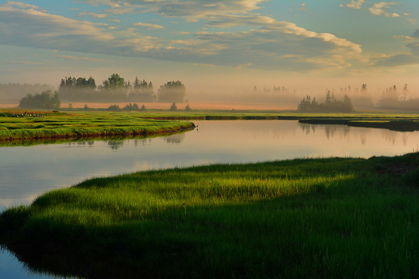 Sunrise along riverbank