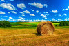 Hay and Canola and clouds