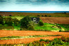 PEI Home and Ocean with farmers fields