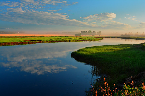 Early sunrise along river in Wood Island