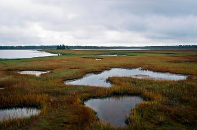 Marsh near Abram Village