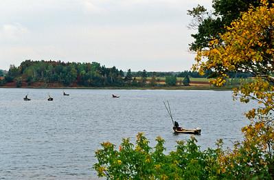 Oyster fisherman, Cascumpec Bay