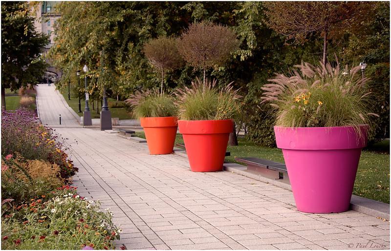 Flower pots in Parliament Park