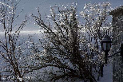 The trees glisten from an earlier freezing rain - Quebec City, QC ... December 30, 2009 ... Photo by Rob Page III