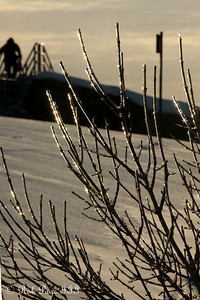 Ice on the trees - Quebec City, QC ... December 30, 2009 ... Photo by Rob Page III