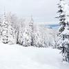 Winter Scene in Charlevoix