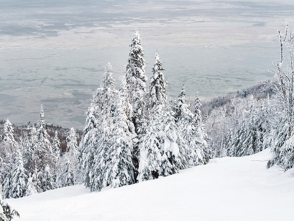 Winter scene with trees and Saint Lawrence River in Charlevoix