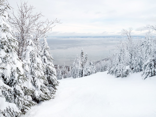 Winter Scene and View on the Saint Lawrence River from Le Massif Ski Resort, Charlevoix, Quebec