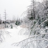 Winter Scene in region of The Eastern Townships in Quebec, Canada