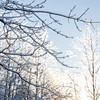 Icestorm in Quebec