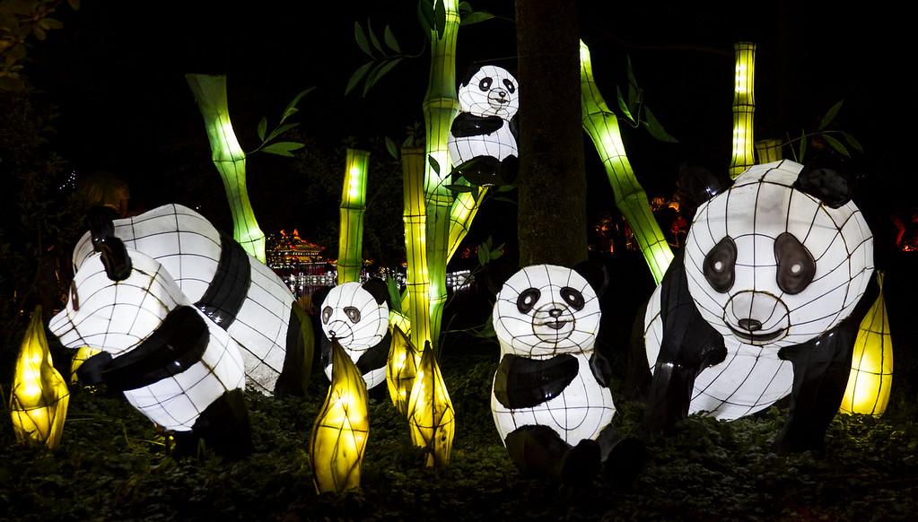Gardens of Light Festival (Jardins de Lumière) in Montreal - Montreal lantern festival