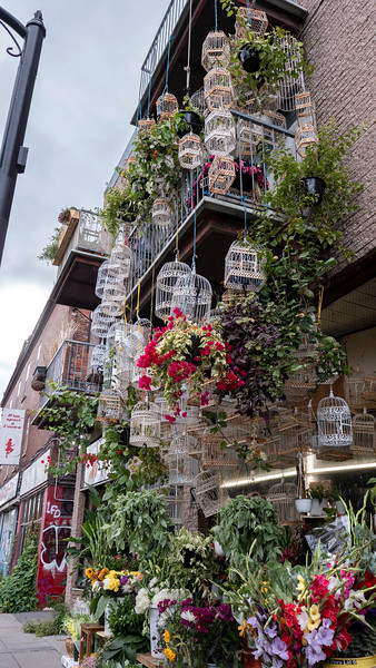 Flower shop in Montreal