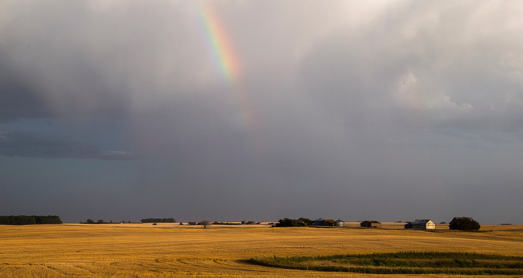 The small slice of Rainbow preceeds the rain about to dampen these fields  found while driving on a rural Saskatchewan road.