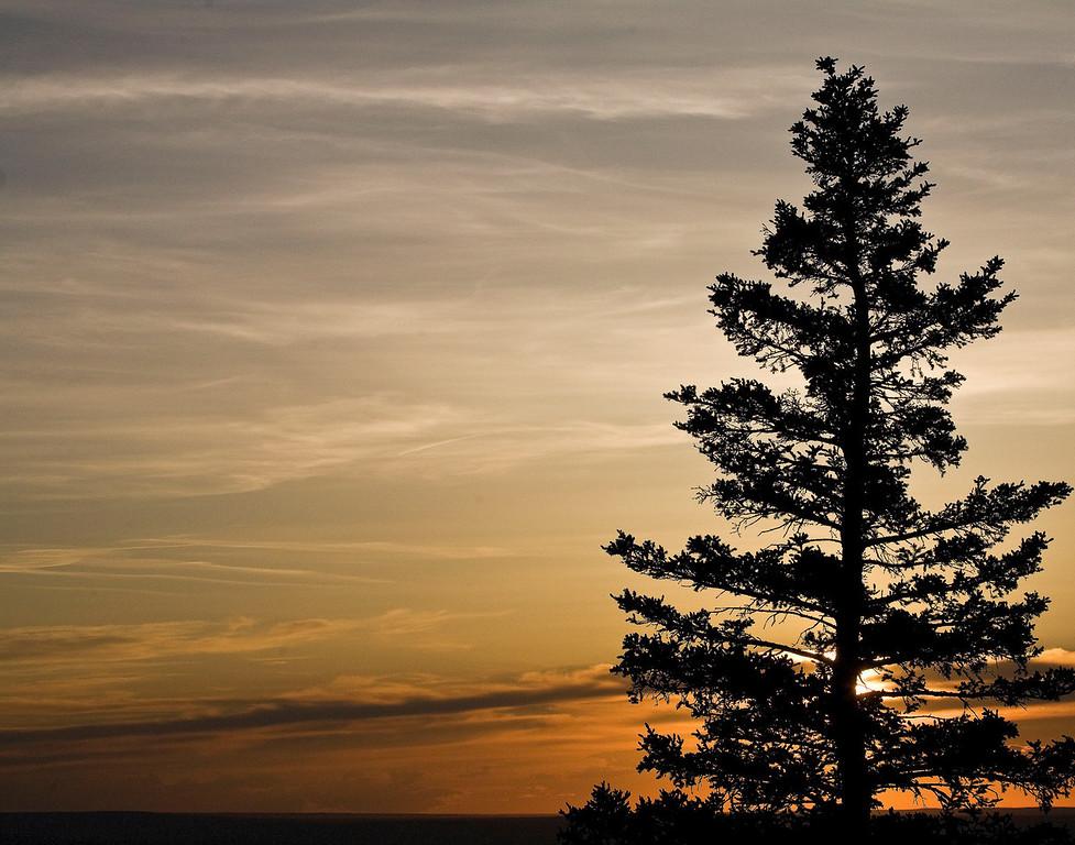 Cypress Hills- Saskatechewan, Canada