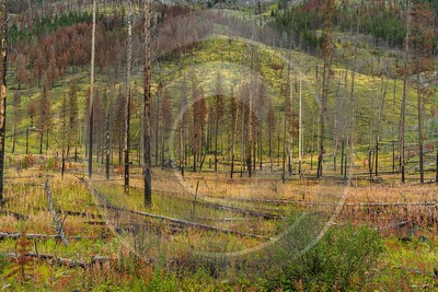 Single Shot Canada Panoramic Landscape Photography Scenic Lake Sky Prints For Sale - 018594 - 04-09-2015 - 7952x5304 Pixel