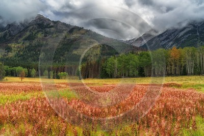 Single Shot Canada Panoramic Landscape Photography Scenic Lake Hi Resolution Winter Fine Art Photos - 018589 - 04-09-2015 - 7952x5304 Pixel