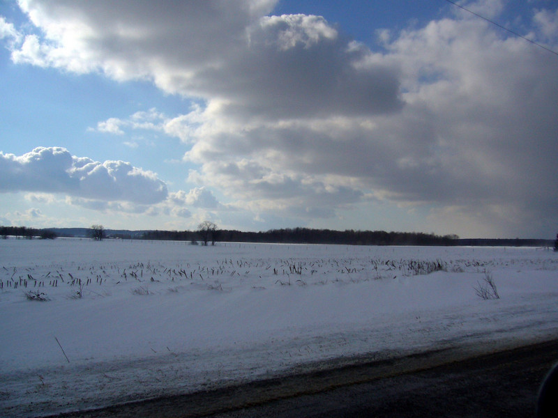 Winter scene near Georgetown Ontario
