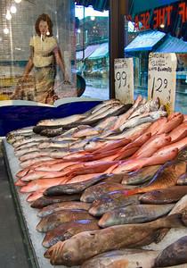 Kensington Market Display