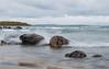 Tiny - Rocks along the beach in Methodist Bay.