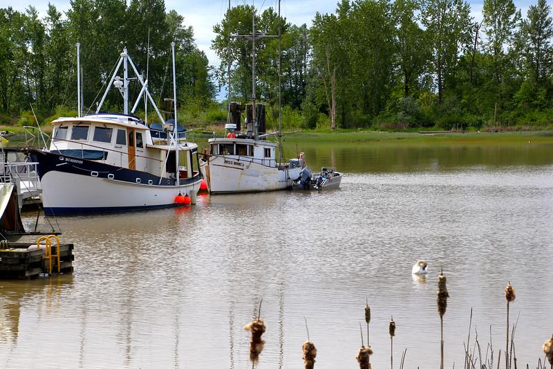 Stevenson BC, Fishing Boats