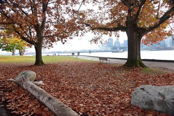 Vancouver-5917