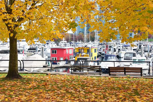 Vancouver-5897