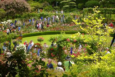The rose garden at Butchart Gardens - Brentwood Bay, BC ... June 26, 2007 ... Photo by Rob Page III