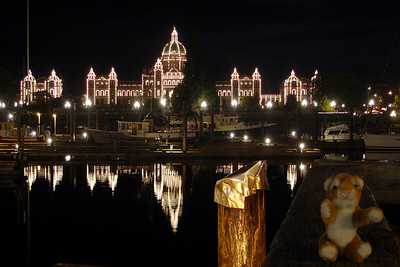 Tora hanging out with the British Columbia Parliament Building at night - Victoria, BC ... June 25, 2007 ... Photo by Rob Page III