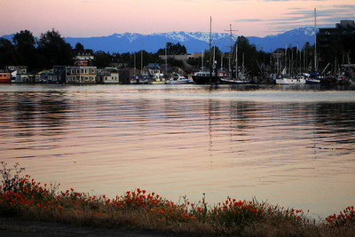 Sunset - Victoria, BC ... June 25, 2007 ... Photo by Rob Page III