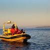Victoria BC, Whalewatching, Haro Strait