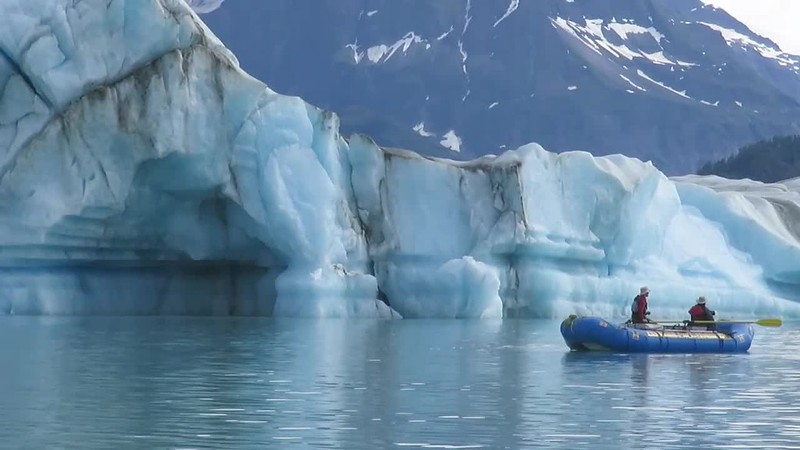 Alsek Lake icebergs