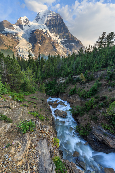 Cliffside Above Toboggan Creek