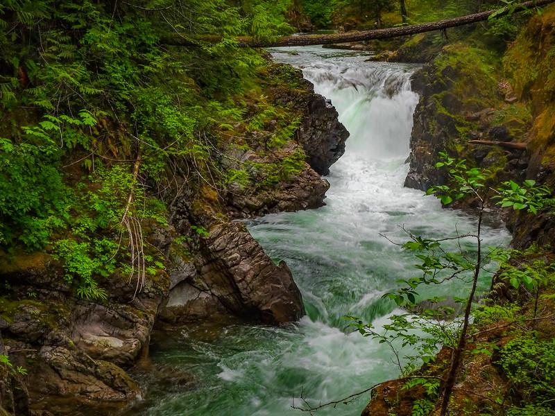 Little Qualicum Falls - British Columbia - Canada