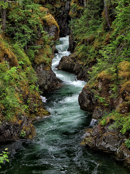 Little Qualicum River