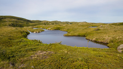 The terrain along the road from Port aux Basques to Rose Blanche.
