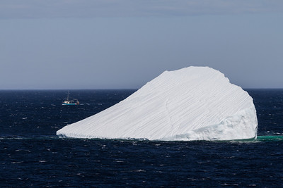 Iceberg and fishing boat near Saint Luniare and St. Anthony.
