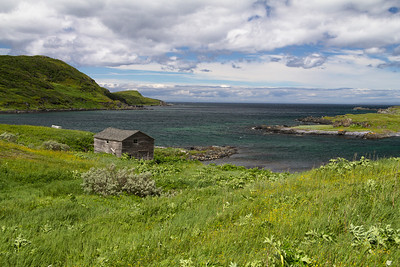 In the village of Quirpon, with Quirpon Island to the right.