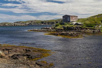 Near Gunner's Cove.