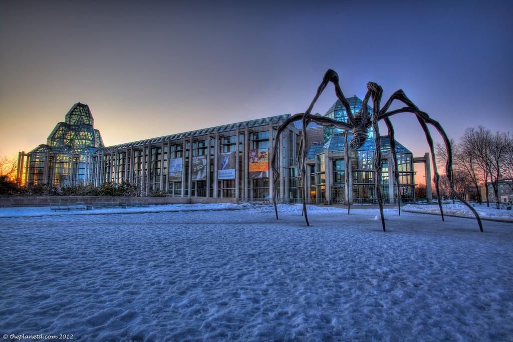 Art-gallery-canada-spider-ottawa