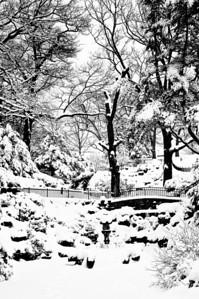 Canada-Winter-High-Park-Toronto