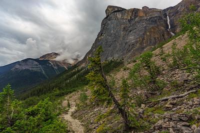 Yoho Pass Trail