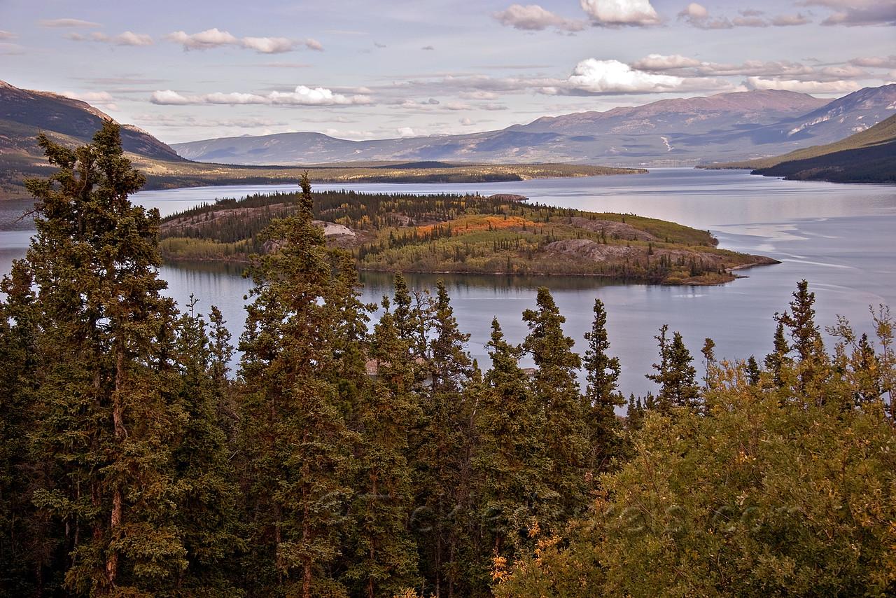 Bove Island in Tagish Lake