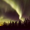 Northen Lights shine bright in Whitehorse, The Yukon, Canada