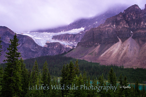 Glaciers of Old