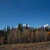 North of Whitehorse, Yukon Territory
