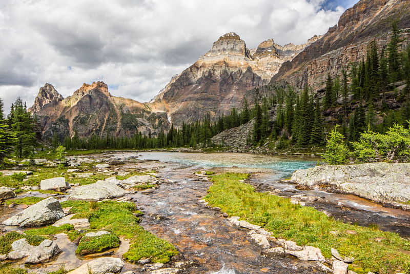 Alpine Beauty, Lake O'Hara Region