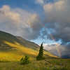 Sunrise Rainbow, Waterton Lakes National Park
