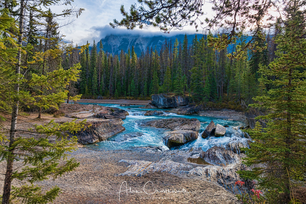 Elbow Falls and Kicking Horse River
