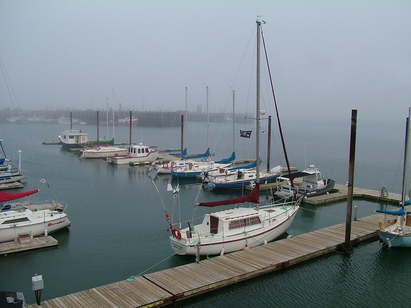 foggy day in Digby - Nova Scotia, Canada