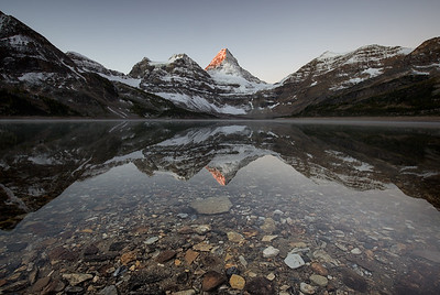 Mount Assiniboine in Lake Magog